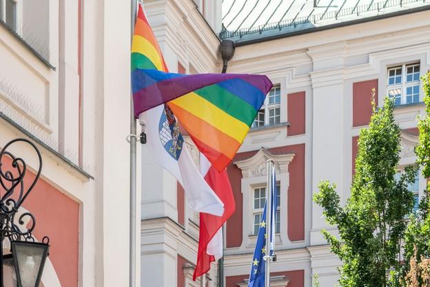 Flaga miała wisieć na maszcie ok. 5 minut/Grzegorz Borys, Grupa Stonewall