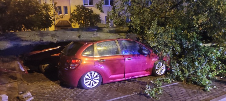 Strażacy z Grodziska Mazowieckiego pomagali w usuwaniu szkód w Płocku