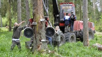 Zarzuty Lasów Państwowych to nadużycie prawa - orzekł Sąd Rejonowy w Białymstoku