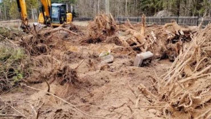 Nowa Wieś Ełcka. Nielegalnie wycięli setki drzew i zniszczyli groby. 1,9 mln zł kary dla parafii