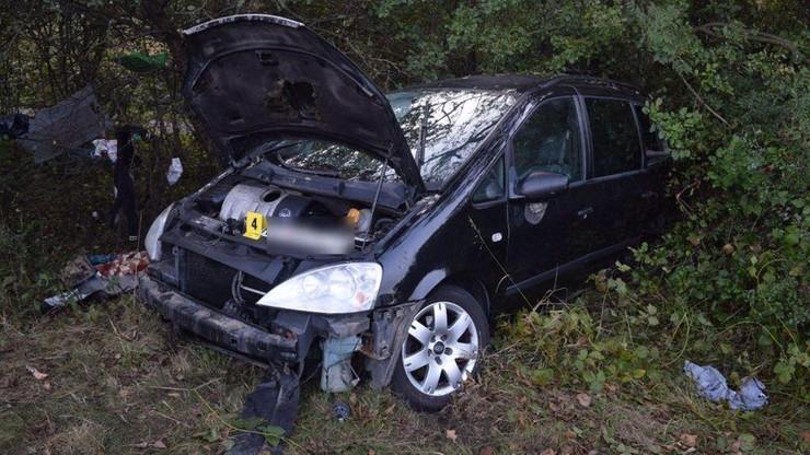 Auto uderzyło w wybiegającego z lasu niedźwiedzia. Jeden z pasażerów zginął na miejscu