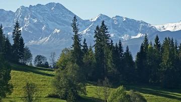 Zakaz wejścia w Tatry korzystny dla przyrody