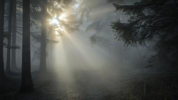 Mgły i dwucyfrowe ciepło. Pogoda na środę