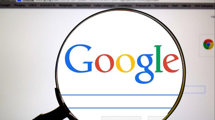 Czego Polacy szukali w Google w 2017 r.? Królowały grzyby