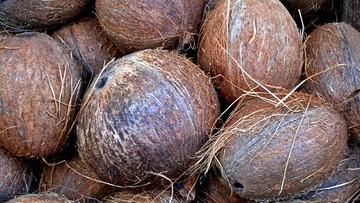 Bojkot Coca-Coli i Pepsi w Indiach. Hindusi wolą mleko kokosowe