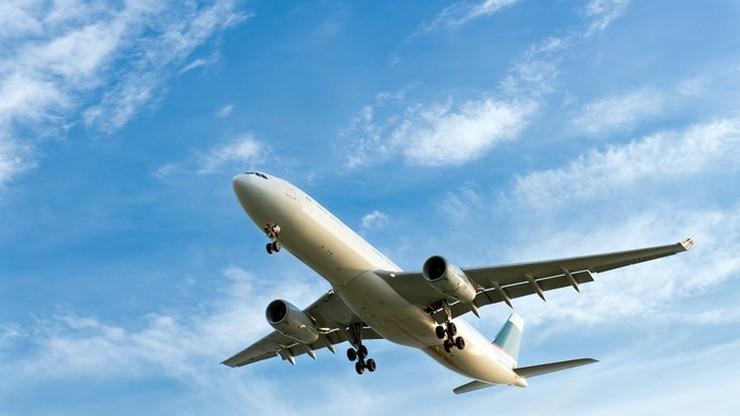 Gorczyca etiopska: Zamiast w musztardę zmieni się w paliwo lotnicze