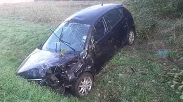 Dzik wbiegł tuż pod nadjeżdżający samochód. Pasażerka trafiła do szpitala