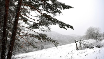W Tatrach lawinowa dwójka. Śnieg i lód na szlakach