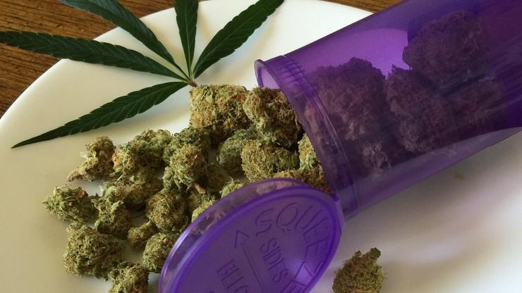 """""""Nie ma czegoś takiego jak medyczna marihuana"""" - stwierdził wiceminister zdrowia"""