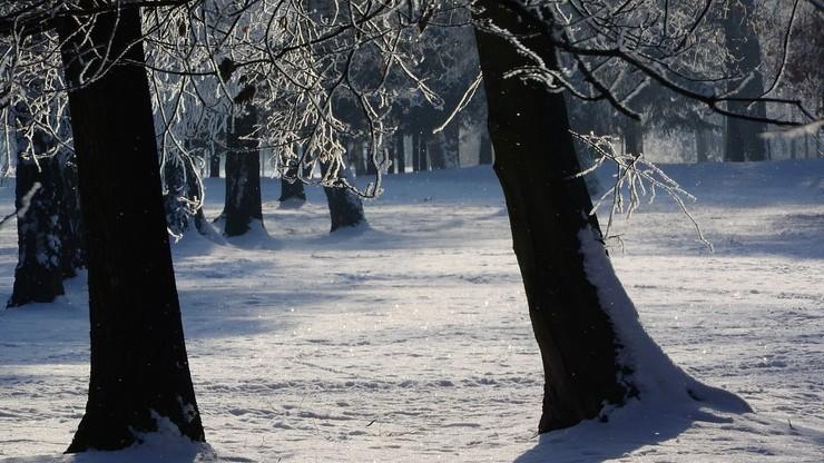 Prognoza pogody. IMGW ostrzega przed opadami śniegu