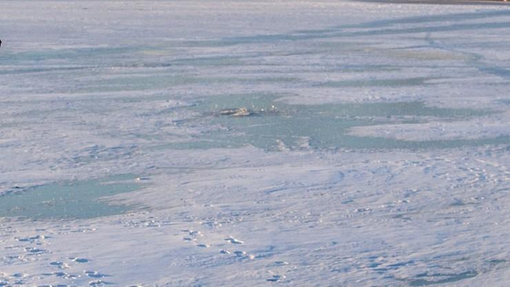 Września: lód załamał się pod nogami trójki dzieci. Stały na środku stawu