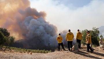 USA: pożar w Napa Valley - sercu przemysłu winiarskiego