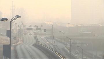 Alergia na smog istnieje. Badania krakowskich naukowców
