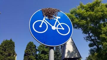 """Pszczoły """"na rowerze"""". Niecodzienny widok w Warszawie"""
