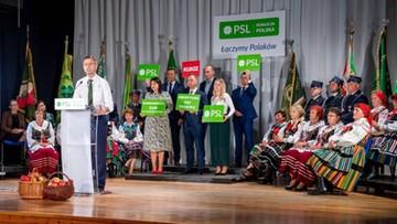 Kosiniak-Kamysz: od wszystkich polityków żądamy normalności i spokoju