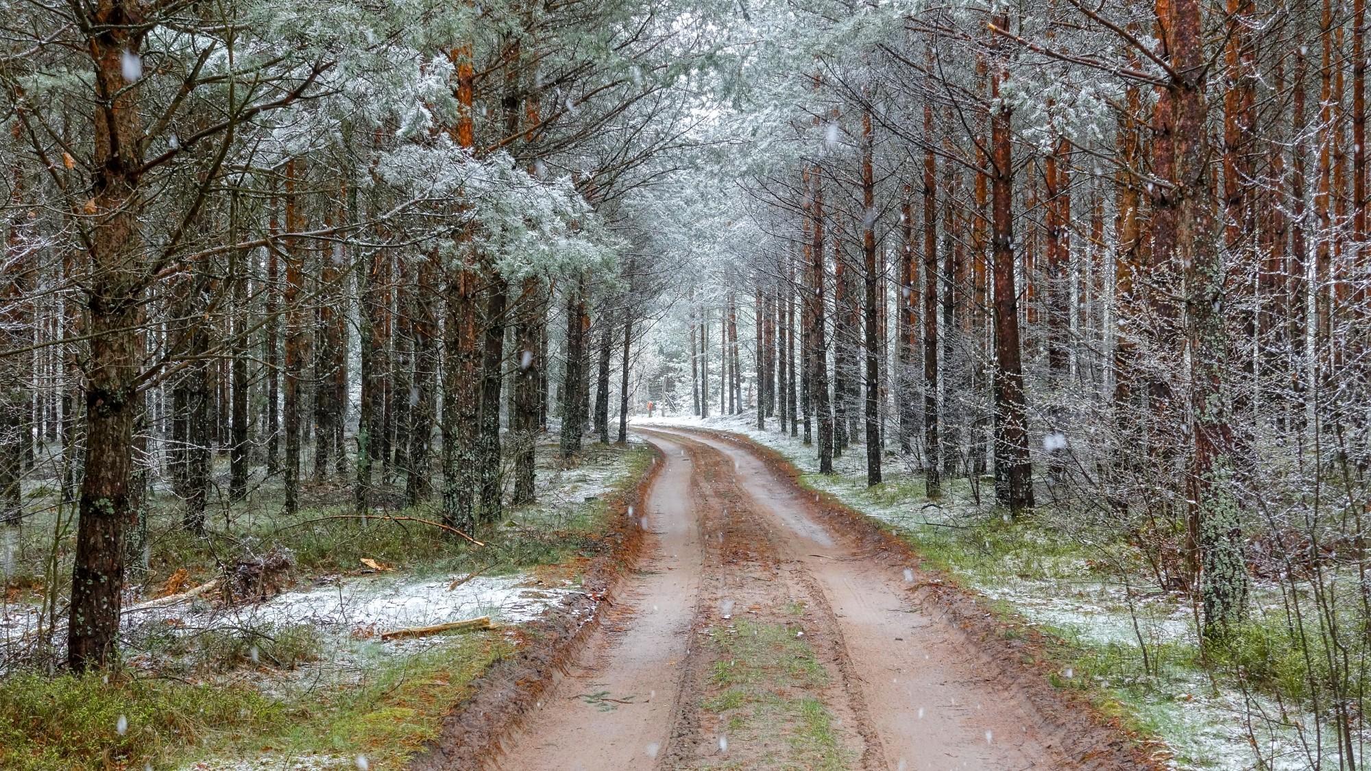 Zima w maju - zdjęcie 3