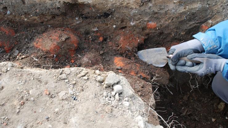 Czworo archeologów oskarżonych o korupcję. Jedna z nich miała popełnić 251 przestępstw