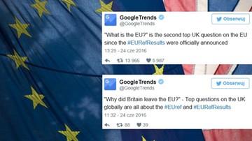Brytyjczycy googlowali czym jest Unia i Brexit. Oto najczęstsze wyszukiwania tuż po referendum