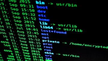 Cyberatak rosyjskich służb. Zagrożone tajne informacje państwowe