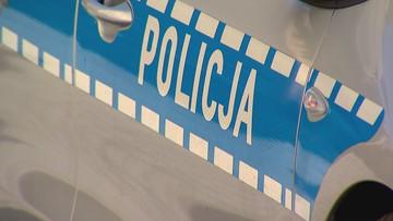 Strzelanina w Gnieźnie. Mężczyźni pokłócili się o psy