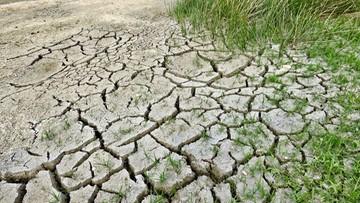 Wg Europejczyków zmiana klimatu to najpoważniejszy problem, przed którym stoi świat