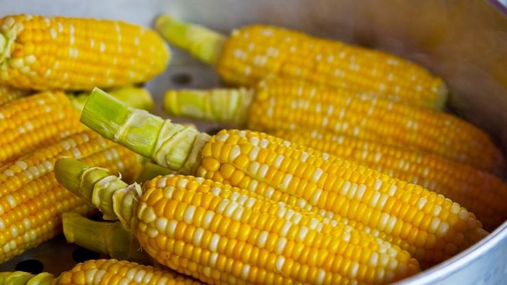 Łeba. Pobili handlarza kukurydzą, bo stanowił dla nich konkurencję