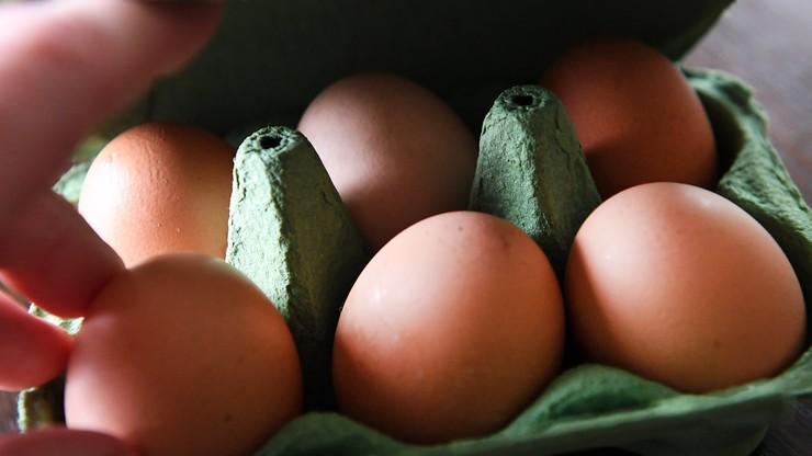 Holandia: dwie osoby zatrzymane w związku z aferą ze skażonymi jajami