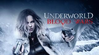 Underworld: Wojny krwi (17 i 18 sierpnia)