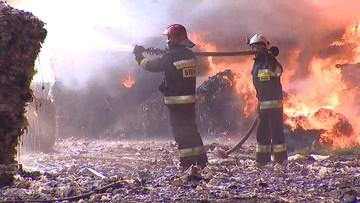250 strażaków walczy z pożarem wysypiska w Zgierzu. Smuga spalin kieruje się na południowy zachód