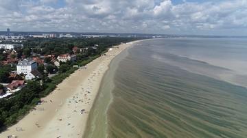 Cztery kąpieliska w Gdańsku zamknięte z powodu sinic