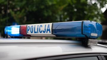 """Policja trafiła na trop auta skradzionego aktorce. Części były w """"dziupli"""" na Wilanowie"""