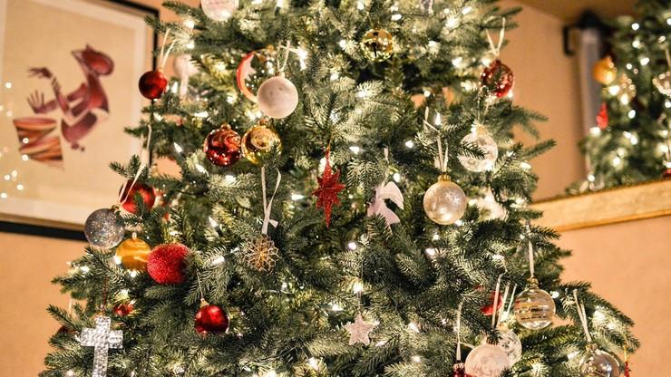 USA: przed Bożym Narodzeniem brakuje choinek. Wiele możliwych przyczyn