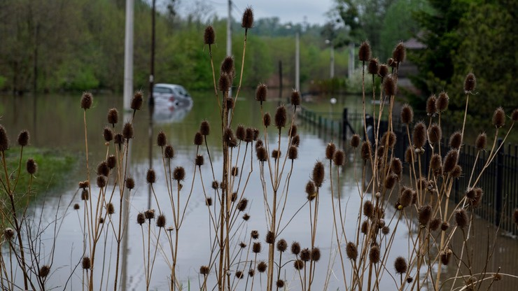 Deszcze, burze i podtopienia. Pogoda na weekend