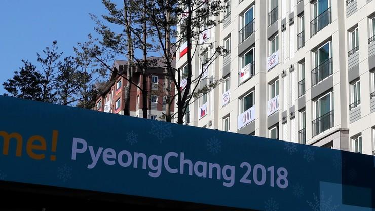 Pjongczang 2018: Hakerzy zaatakowali serwery organizatorów igrzysk