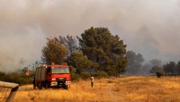 """Grecja walczy z pożarami. """"Najgorsze od 1987 roku upały"""""""