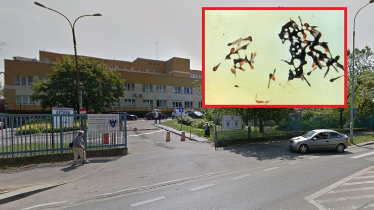 Wrocław. Nie działał SOR w szpitalu wojewódzkim. Wykryto niebezpieczną bakterię
