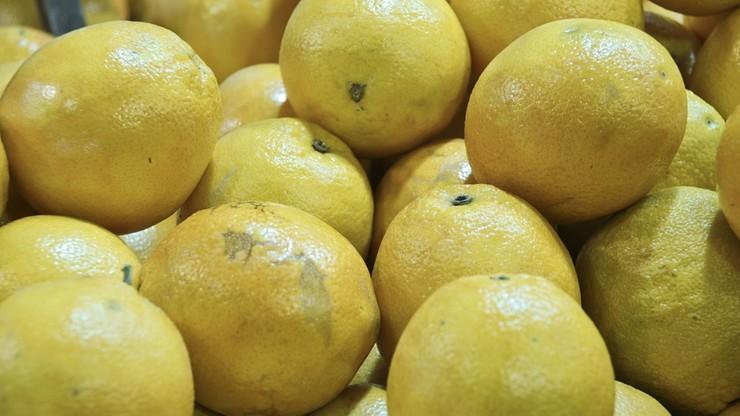 Próbowali wyłudzić 20 ton cytryn. Oszustwu zapobiegli kaliscy i warszawscy policjanci