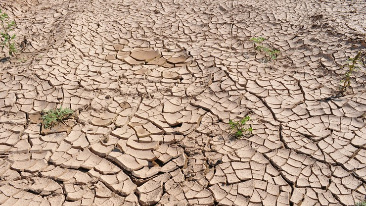 Ekohydrolog: dopóki nie zabraknie wody w kranach, nie zauważymy, że grozi nam susza