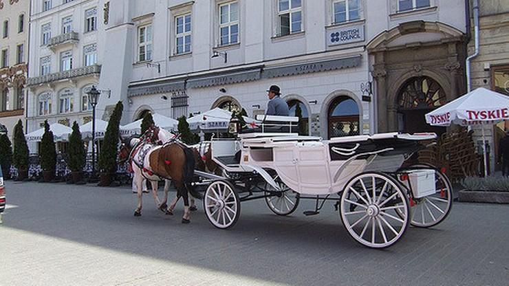 W związku z upałami Kraków wprowadził zakaz postoju dorożek na Rynku Głównym