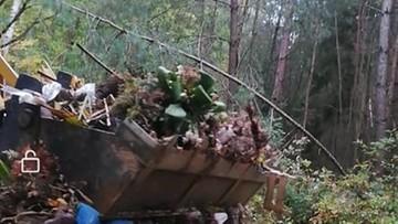 Wiązanki żałobne, szarfy, znicze – porzucone w środku lasu pod Lublinem