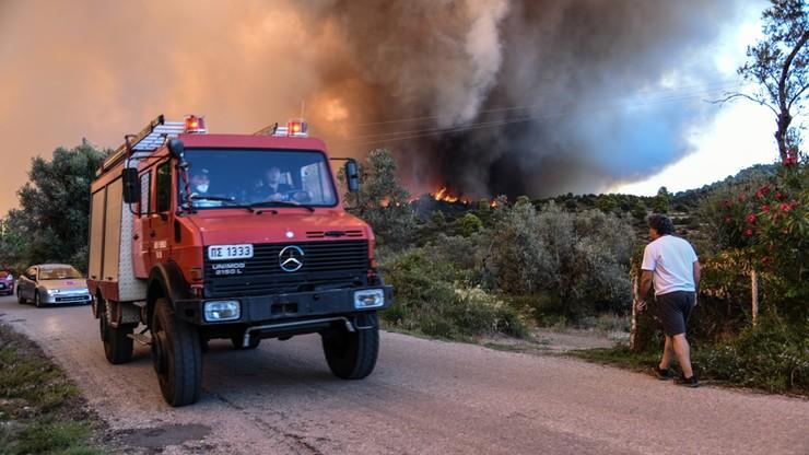 Ewakuowano dwie miejscowości na greckiej wyspie Eubea z powodu pożarów