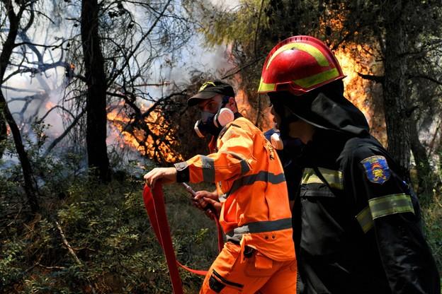 Greccy strażacy walczą z pożarem na Peloponezie