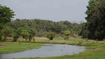 Park narodowy usunięty z listy UNESCO. Bo już mu nic nie zagraża